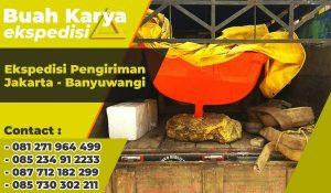 Ekspedisi Pengiriman Barang Jakarta Banyuwangi